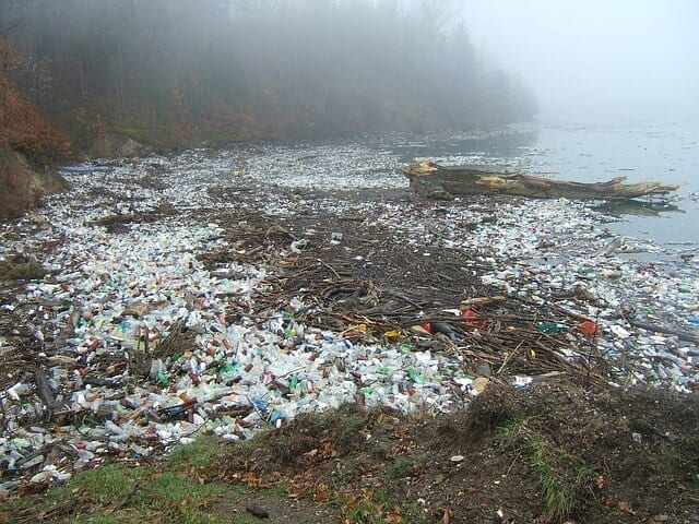 Recycle efficiently https://www.gardeninglove.co.uk/recycle-efficiently Masses of plastic waste lay across a shoreline.