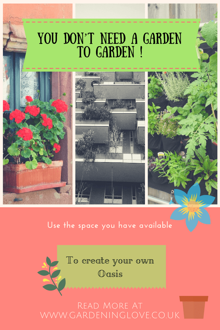 Balcony gardenening, high raised property gardening, vertical gardening. You dont need a garden to garden, smal garden ideas. #smallspacegardens #smallgardenideas #patiogardening #balconygardening #containergardening