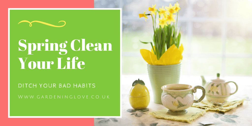 Springtime. A time for new beginnings and fresh starts. Spring clean your life and ditch your bad habits. #spring #freshstart #health #happiness