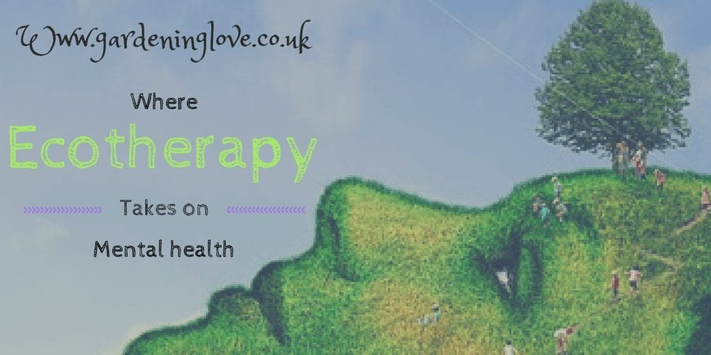 Www.gardeninglove.co.uk The meaning behind gardening love. Where ecotherapy takes on mental health.