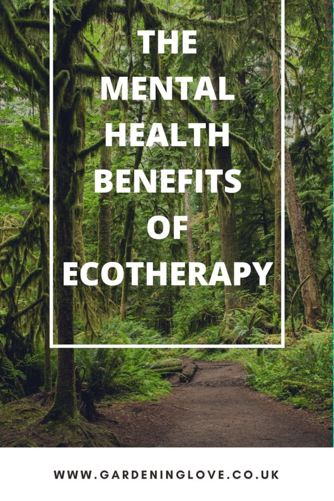 how to use ecotherapy to help your mental health and wellbeing. What is ecotherapy and how can nature help depression. #mentalhealth #depression #ecotherapy #naturetherapy #naturehelpsmentalhealth