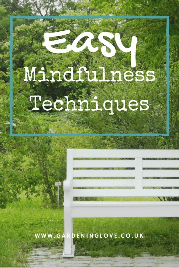 Mindfulness tips easy to use. How to live life mindfully. #mindfulness #mindfulnessforbegginners #mindfulnessroutine #mindfulnesstips