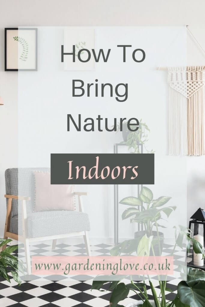 How to bring nature indoors. Find simple ways to include nature in your home. Include nature in your home decor to increase wellbeing. #nature #home #homedecor #houseplants #airpurifying #eco #ecotherapy #naturaldecor