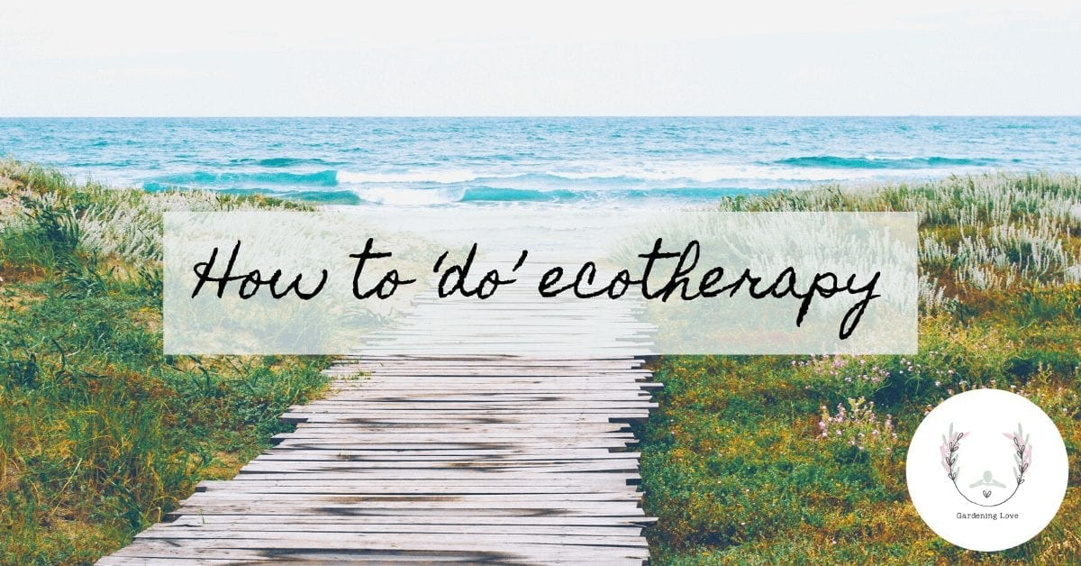 How to do ecotherapy #EcoTherapy #GreenTherapy #Shinrin-Yoku